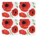 Poppy Design Drinks Coasters - Pack Of 4